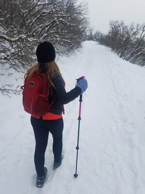 Hiking Sticks In Snow